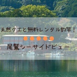 【釣りのできる宿】三重県・尾鷲シーサイドビュー【近畿・東海】