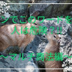 街コンでこのワードを使う人は危険?!!~マルチ商法編~