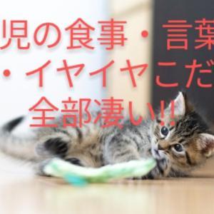 2歳児の食事・言葉・遊び・イヤイヤこだわり全部凄い!!