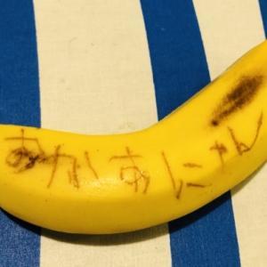 年長児がひとりでできるバナナの簡単実験