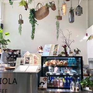 韓国 seoul  cafe & botanical  ・The Piola cafe