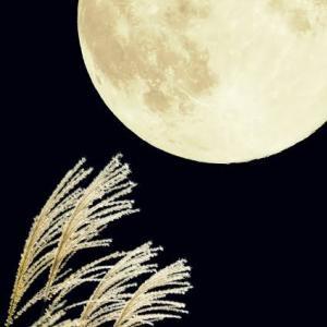 満月のパワーで浄化し十五夜の美しさで癒しましょう♡魚座満月〜ツインレイ・Tamaki Style