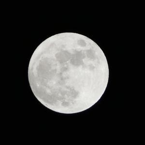 輝く未来のための準備を始めましょう♡牡羊座の満月〜ツインレイ・Tamaki Style〜