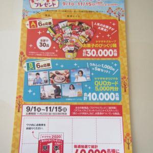 【副収入】ヤマザキ 2020秋のわくわくプレゼントに応募してみた