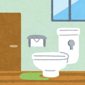 【日常】ひとり暮らしサバイバル:トイレのドア閉めますか?