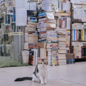 売れた55冊の本たちと本棚