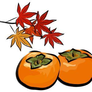 秋にオススメ柿ダイエット!驚きの栄養と柿の効能!