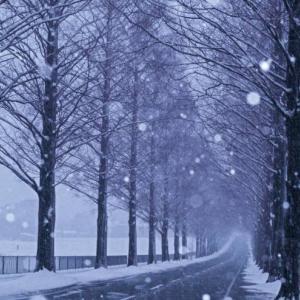 冬に腰痛が多いのは冷えが原因!体を温めることと姿勢が大事!