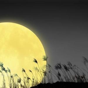 眠りを助ける秋は睡眠改善がしやすい!