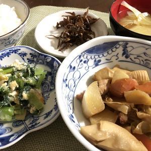 夜の訪問者&タケノコと鶏もも肉の煮物
