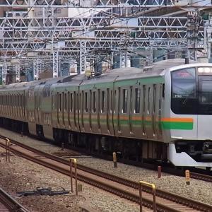 【東海道線のレア車両】E217系湘南色
