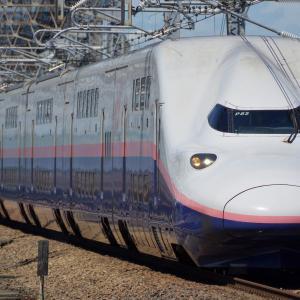 E4系「Maxあさま」という迷(?)列車