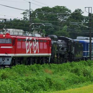 【EF81+D51+12系】SL東北DC陸羽東線号 送り込み