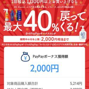 花王×Paypayキャンペーン