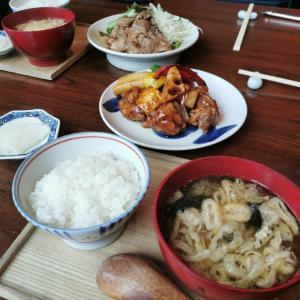 酢重正之 シンガポール ご飯お代わり!日本の味を目一杯楽しんできた