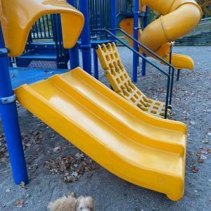 アメリカの公園遊具