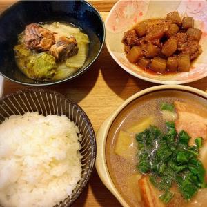 牛すじとコンニャクの甘辛煮、サバ缶と白菜の重ね煮 定食。