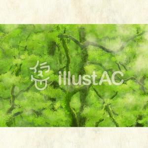 新緑の森林:フリーイラスト素材