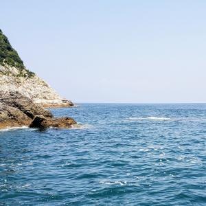 長崎県端島(軍艦島)の石鯛