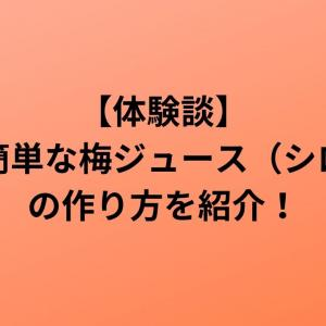 【体験談】とても簡単な梅ジュース(シロップ)の作り方を紹介!