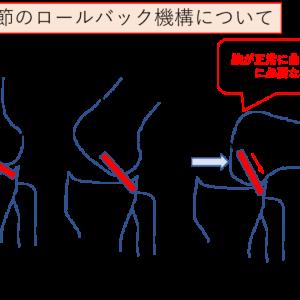 膝関節のロールバック機構とは?~膝の屈曲を正常に行うために必要な機能~