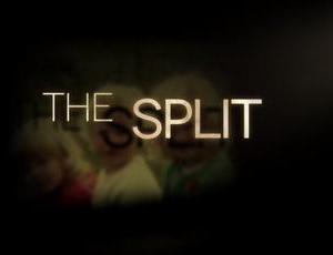 ドラマ「ザ・スプリット 離婚弁護士」シーズン1 感想 ~ 結婚・離婚を通してファミリーを描く大人の女性のドラマ