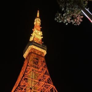 南へ発つ~1ヶ月間東京滞在の感想~