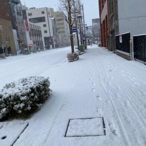 岐阜でも雪だいぶ降ってます