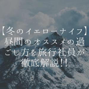 【冬のイエローナイフ】昼間のオススメの過ごし方を旅行社員が徹底解説!!