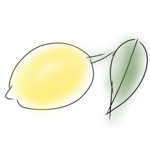 種から育てるレモン