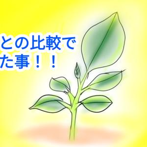 【種から育てるレモン 2か月目】昨年のレモンとの比較でわかった事!!