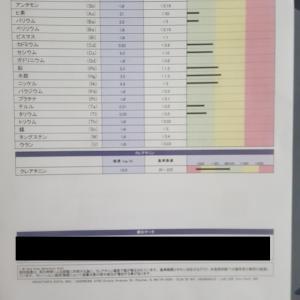 小西統合医療内科診察(11回目)