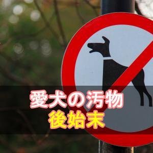 みんなで守ろう散歩のマナー【最悪の場合、罰則もあるよ!】 より 犬のウンチ、マーキング、正しく処理処分していますか? へのコメント