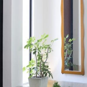 玄関に窓は必要?窓を付けるメリットとデメリットを考える