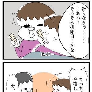 №52 妊活① 夫婦生活