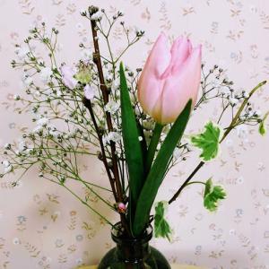 BloomeeLIFE 今年最初のお花