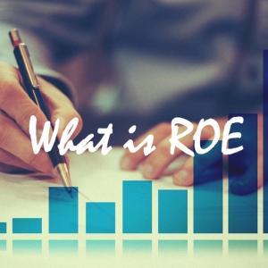 【株式投資入門】ROE(自己資本利益率)とは?目安・ROAとの違いも解説!