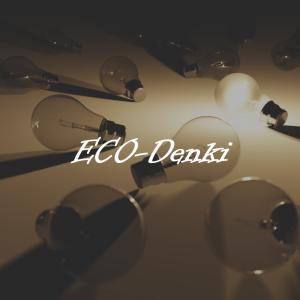 エコ電力の特徴とは?電気代が年間15,000円の節約できる!