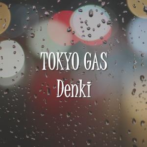 【東京ガスの電気】デメリットや特徴を解説!勧誘された方は必見