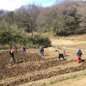 田起こし。田んぼ始まる2021年。