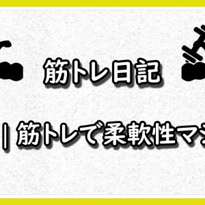 【26歳サラリーマンの筋トレ日記】#55 筋トレで柔軟性マシマシ