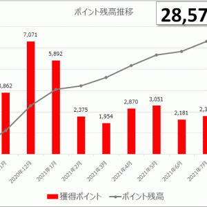 【楽天ポイント】27歳独身男のポイ活 2021年8月 残高28,570pt