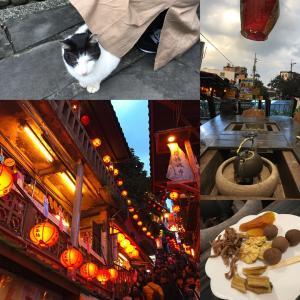 3泊4日ナース女子旅・台湾旅行記3日目〜猫村猴硐・十份でランタン・九份でお茶〜