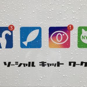 即日交付!!「埼玉編」国外運転免許証を取得