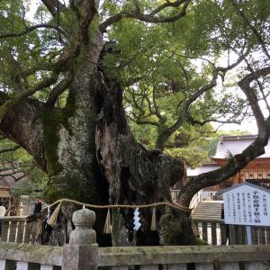 【愛媛】御朱印探訪:大山祇神社(大三島)