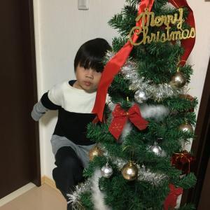 【DIY】クリスマスツリーをアレンジしてみた件