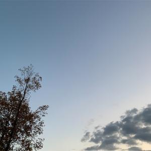 思わず空を見上げたくなる時、、