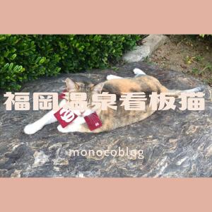 【福岡県糸島市】温泉にかわいい看板猫が♡