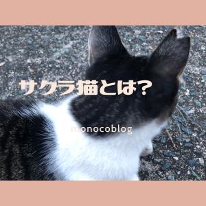 耳カットの【さくらねこ】って?