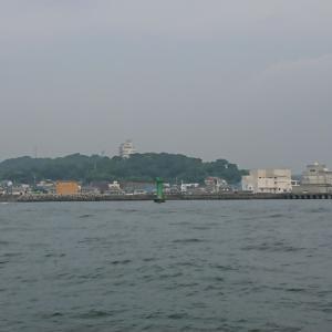豊浜港 魚ひろばへ
